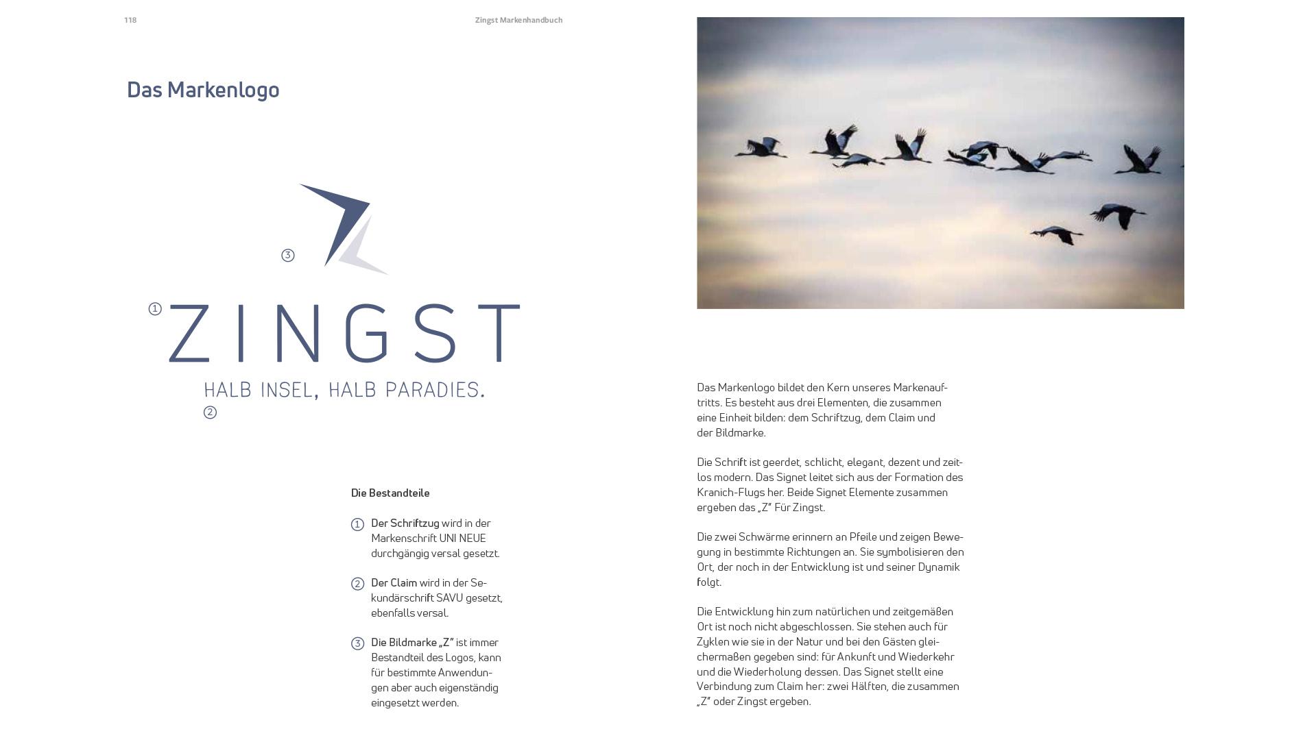Markenentwicklung Corporate Design Zingst Markenlogo Vögel Going Places